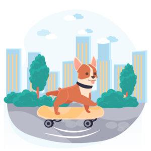Servizio taxi dog